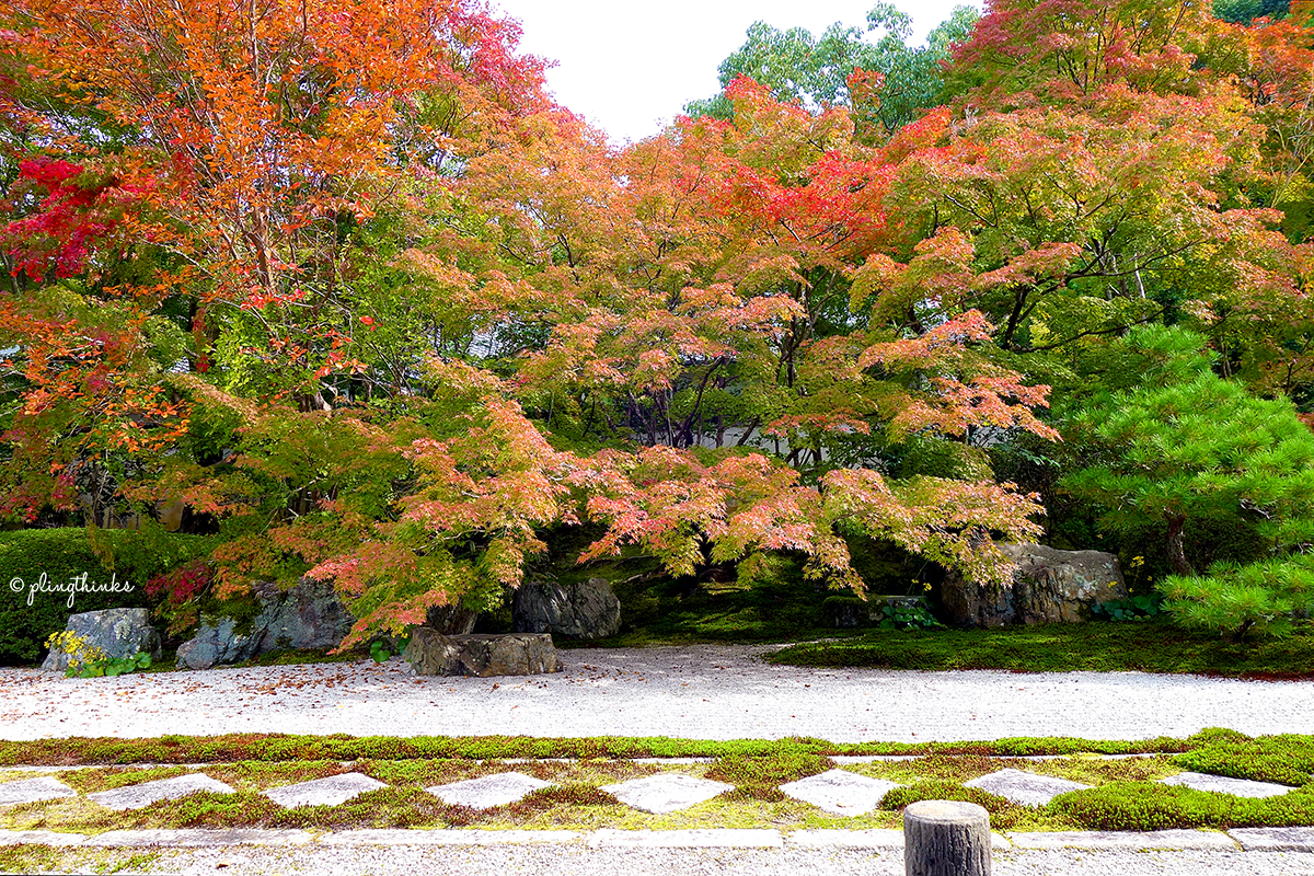 Nanzenji Temple Autumn - Tenjuan Garden Maple Leaves Rock Path